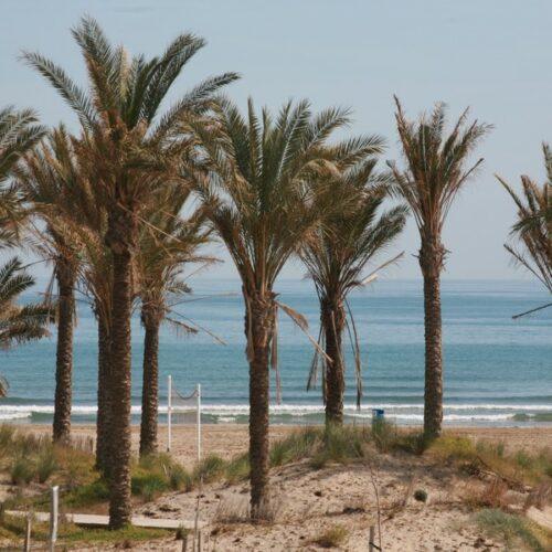 parque_litoral011